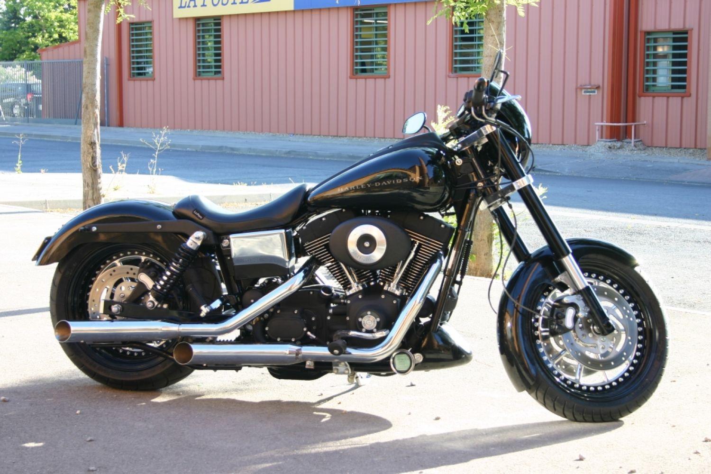 The Snake Harley Davidson Dyna: Harley Davidson 1450 Dyna